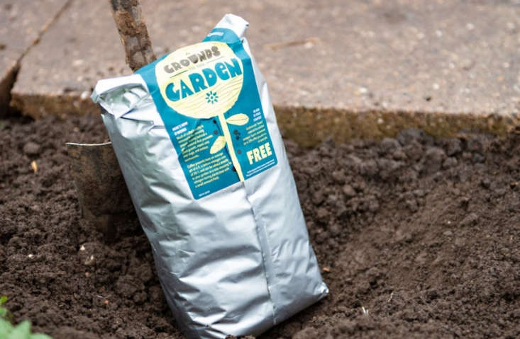 Starbucks gives away bags of free coffee grounds to gardeners.