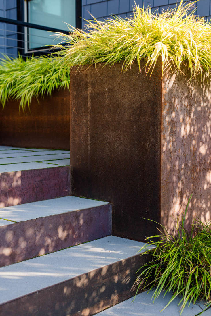 The steps are bracketed by 3-foot-tall carbon steel planters planted with Hakonechloa macra 'Aureola' Japanese Forest Grass. (For a similar plant, see Gardening \10\1: Japanese Sweet Flag Grass.)