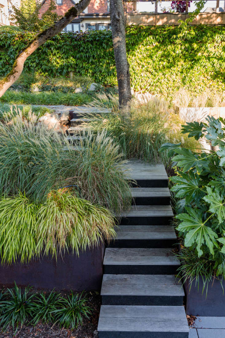 A mix of grasses—including Liriope muscari &#8\2\16;Big Blue&#8\2\17; Lily Turf, Nassella tenuissima Mexican Feather Grass, and Maiden Grass—creates a soft and textured look.
