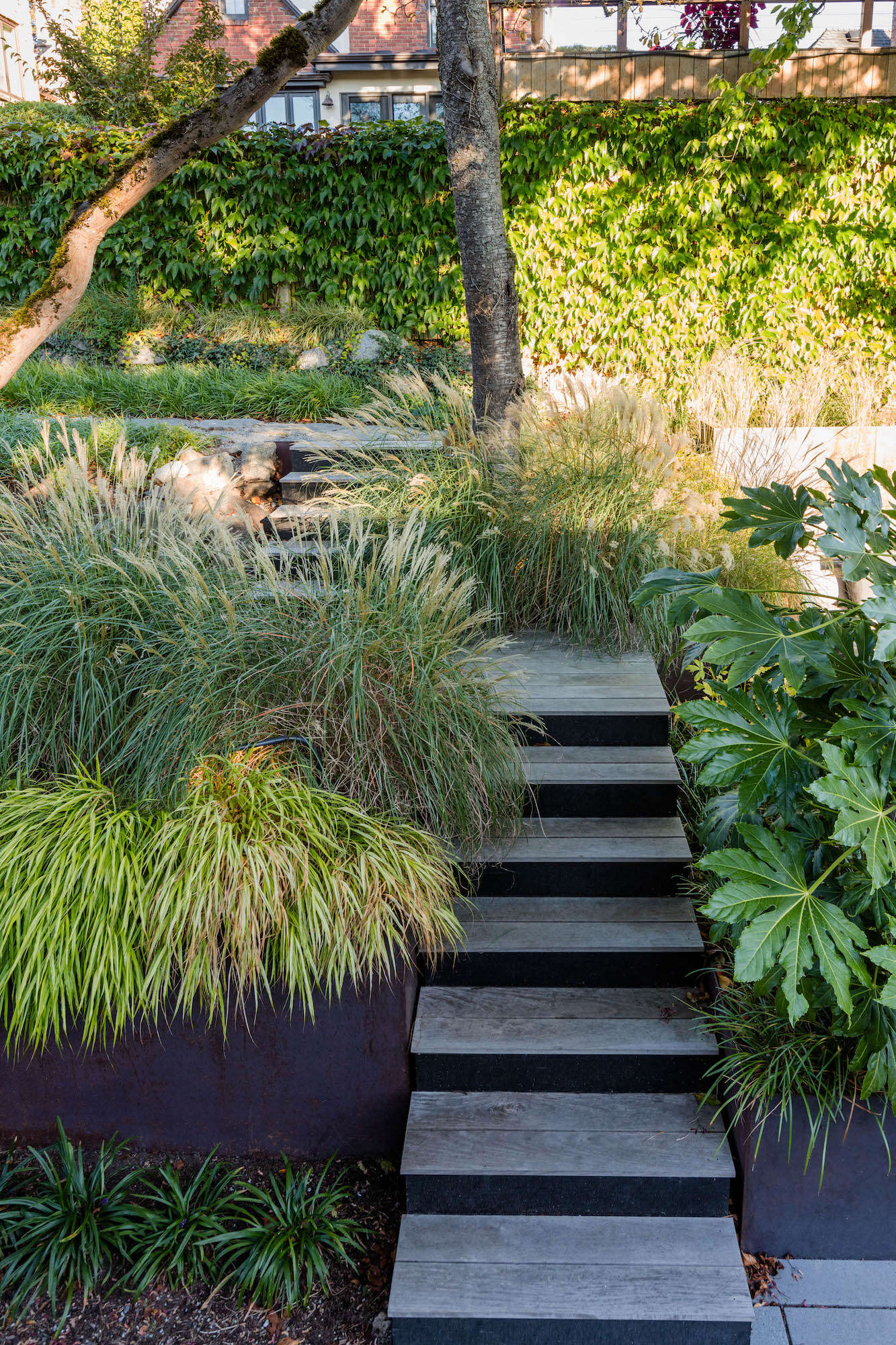 A mix of grasses—including Liriope muscari &#8