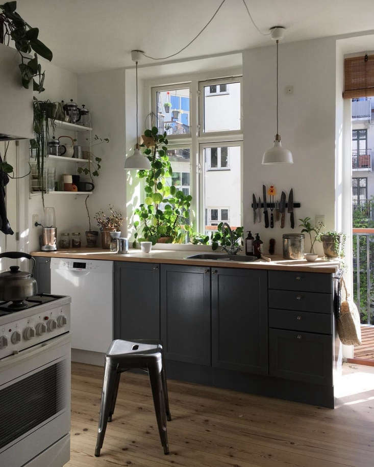 Houseplants add color and life to this simple kitchen in Copenhagen. See Kitchen of the Week: An Architect's Light-Filled, DIY Copenhagen Kitchen, Ikea Hack Included. Photograph courtesy of Stine Marie Rosenborg.
