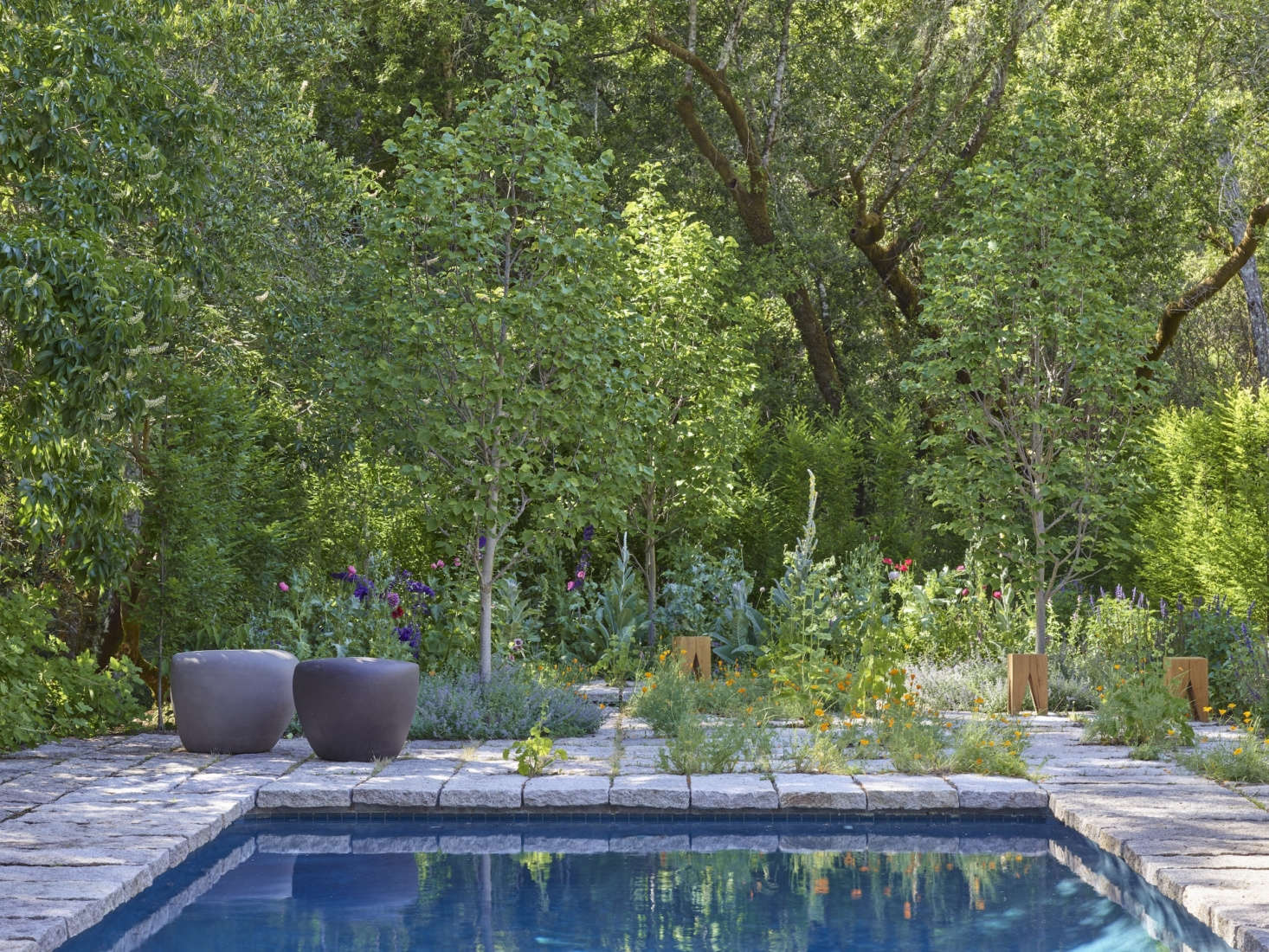 The structural work and the garden fundamentals—including a Carpinus (hornbeam) hedge and three &#8