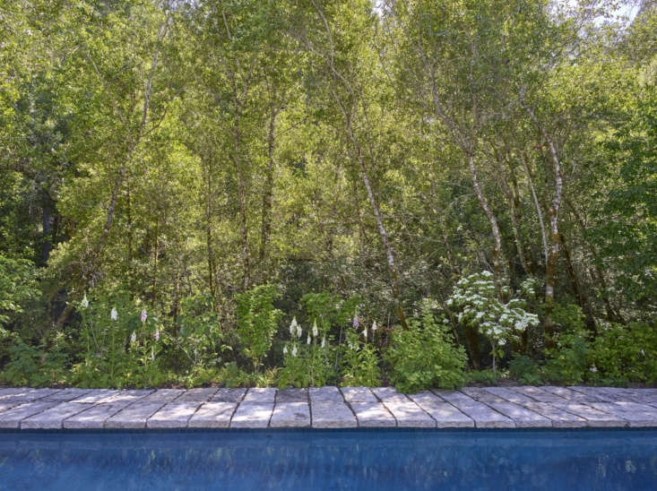 The pool was always on the property, but it was surrounded by concrete. The couple had the concrete replaced instead with slabs of reclaimed sidewalk that a stone supplier sold to them at a very discounted price.
