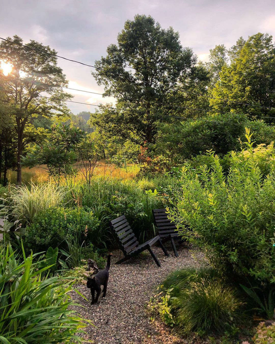 The couple are fans of the stone paths as they allow them to walk through the garden without getting muddy. (See Low-Cost Luxe: 9 Pea Gravel Patio Ideas to Steal.) They made the black chairs themselves as prototypes for a possible outdoor furniture collection.