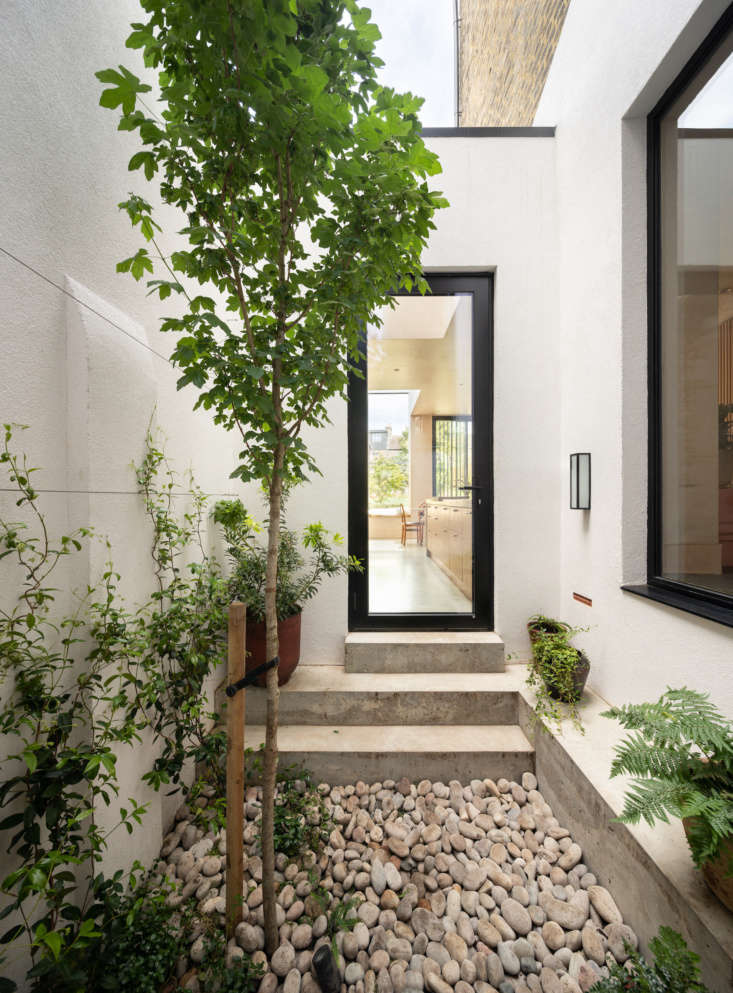 A tiny interior courtyard has a big, beautiful impact on nearly every room of this London home. Photograph by Adam Scott, courtesy of Fraher & Findlay, from Kitchen of the Week: A Modern Space Thanks to a Traditional 'Tsubo-Niwa'.