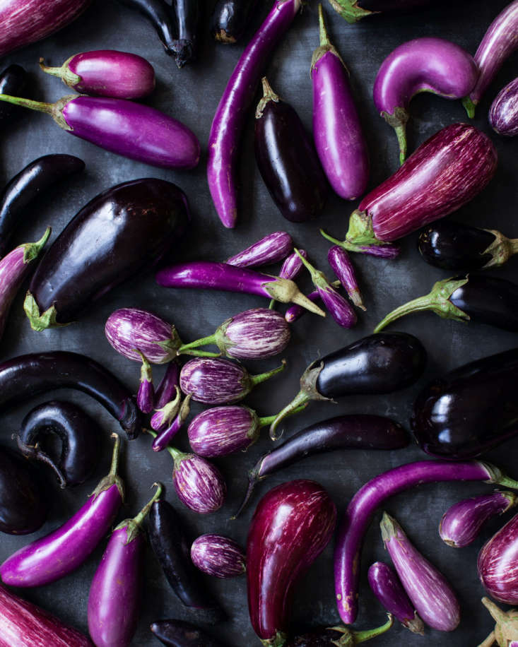 Says David: &#8\2\20;Not only are these beauties in the most stunning shades of dark purples to variegated maroons and more subtle lavenders, their shapes are so expressive, and they are in season! We think eggplants are edible art and worthy of their moment in the spotlight!&#8\2\2\1;
