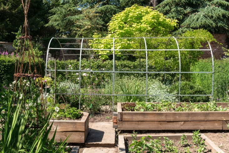 &#8\2\20;We have a raised bed area to grow cut flowers, vegetable, and salad crops.&#8\2\2\1;