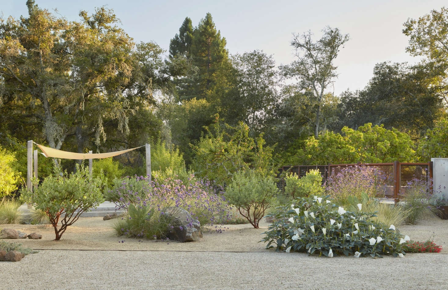 """The garden was built on Southern Pomo ancestral territory. Story says the project """"pollinates the agricultural and native contexts with contemporary sensibilities and uses."""" Manuel Fernandez and his team from Green Footprint Landscaping worked with Story to bring her vision to life."""