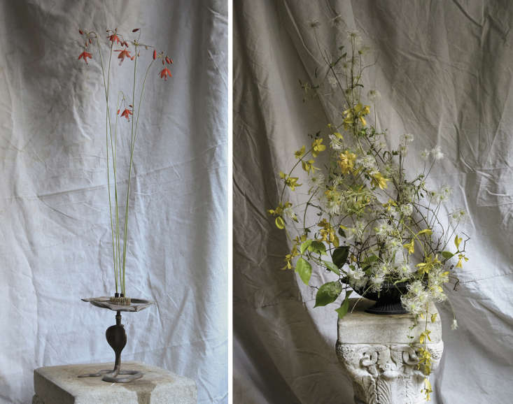 Above left: The simple treatment, with Bressera elegans standing tall, as it would in nature. Right: A shallow, opaque vase can support woody vines in a variety of ways, including old-fashioned chicken wire.