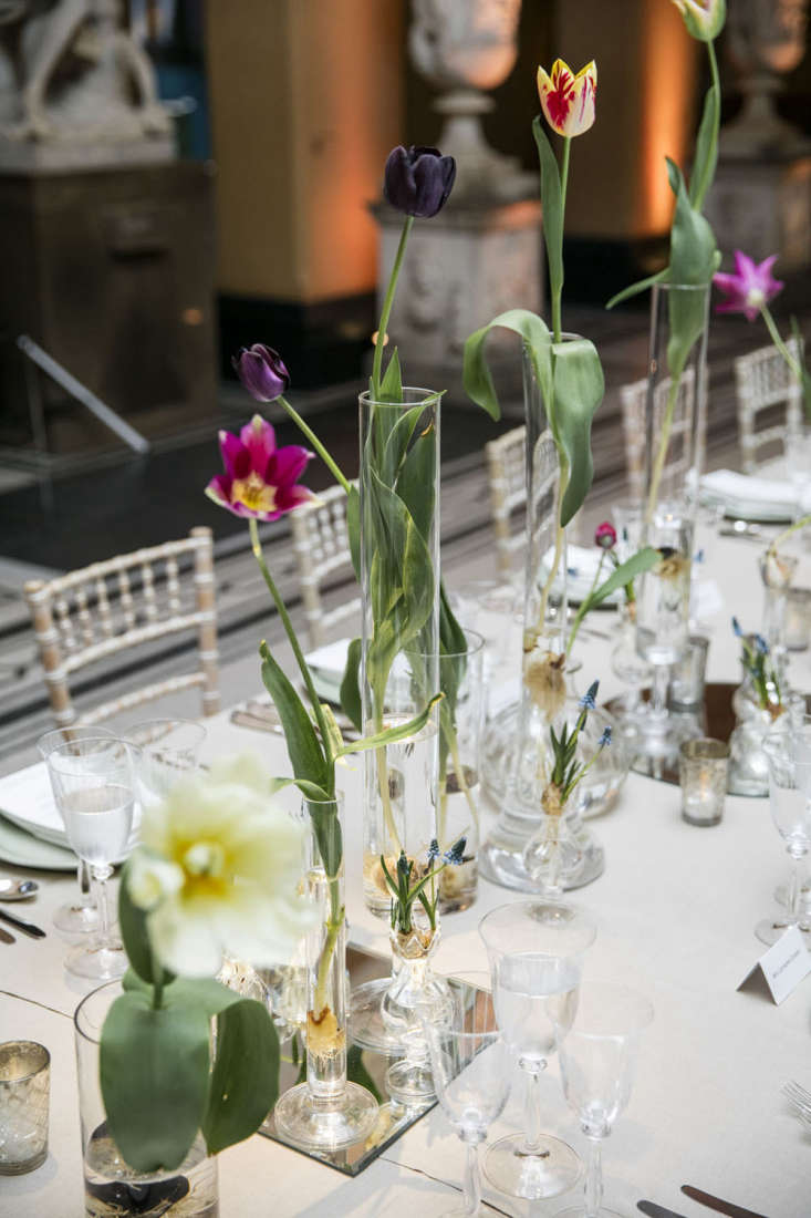 Shane Connolly dresses up a dinner at the Victoria & Albert Museum in London with tulips and grape hyacinths still attached to their bulbs. Photograph by Thomas Alexander.
