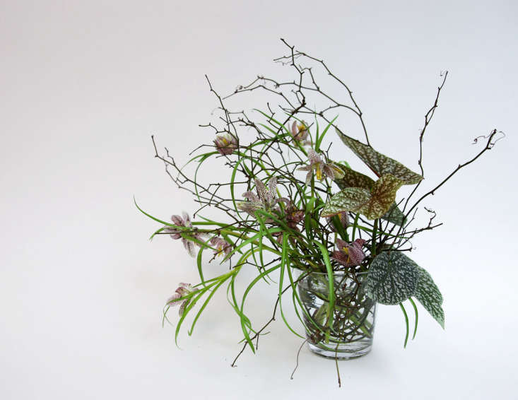 A twiggy arrangement of fritillaries and begonia is held together by 'brambling', an underwater nest of woody stems.
