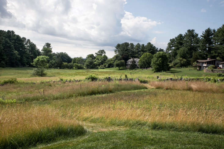 Mown paths are created throughout the property to allow people to engage in the diverse meadow types and topography, as well as to get a closer view into wetland beyond.