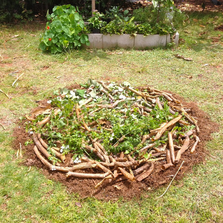 A hugelkultur bed ready for a top layer of compost and soil. Photograph by Rosa Say via Flickr.