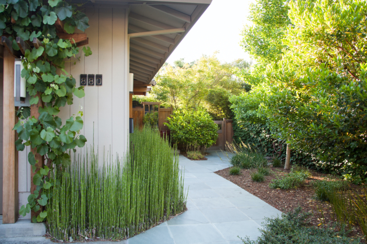 The \24-inch square slate paving deliberately angles through the space, adding to the illusion of depth, while the horsetail helps obscure the space to create mystery.