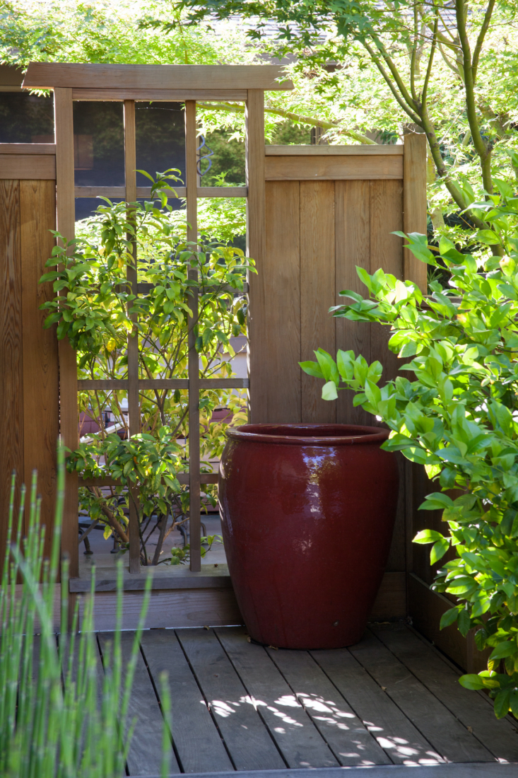 An oversized red glazed ceramic container adds a burst of color to an otherwise shady corner spot.
