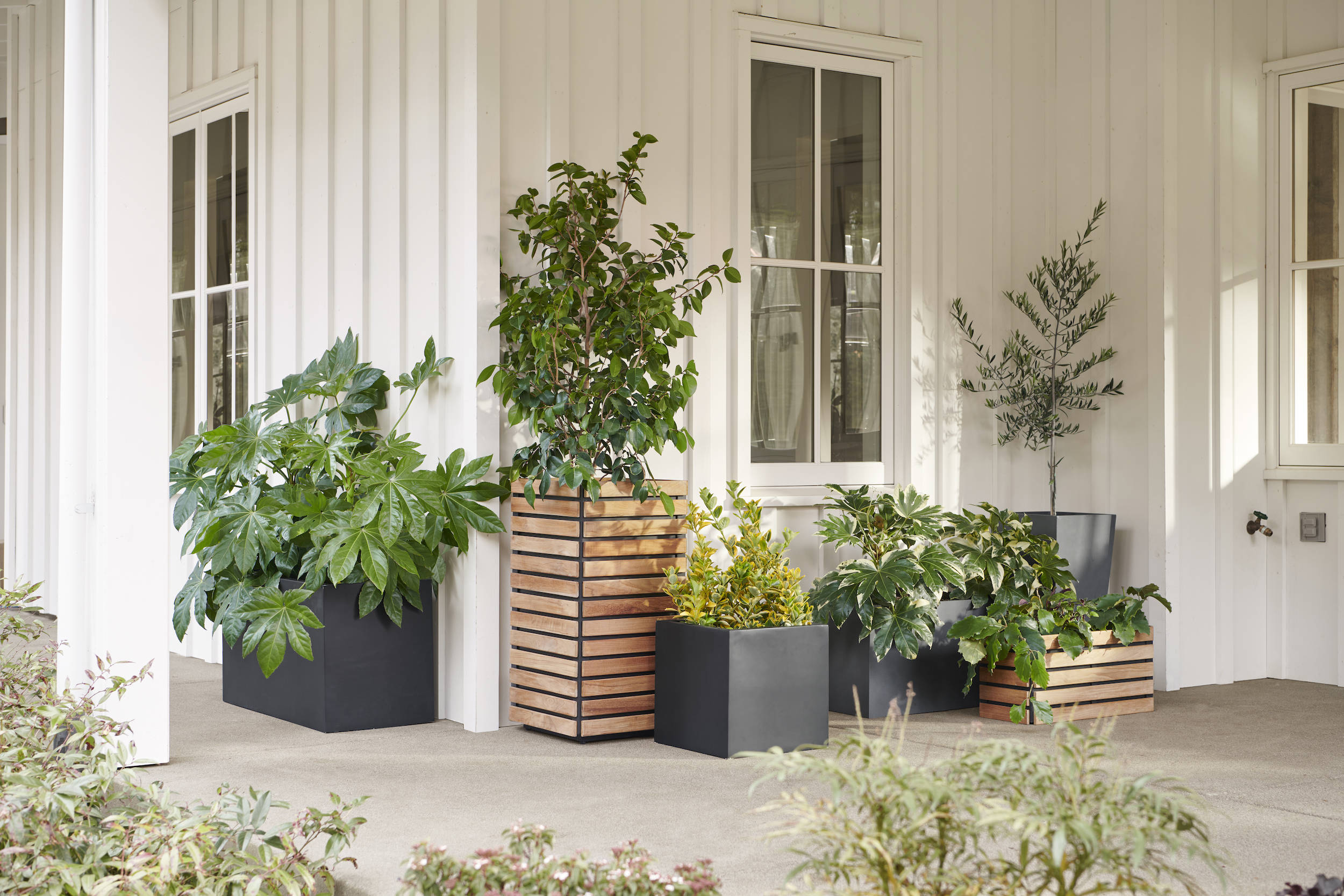 Pots and planters create the ideal garden: They can be moved according to sun and temperature conditions; you can control the soil and nutrients within them; and they're gentler on the gardener's back. Plus, you can use them to soften the edges of a patio or terrace, add privacy, and create the feeling of verdant rooms.