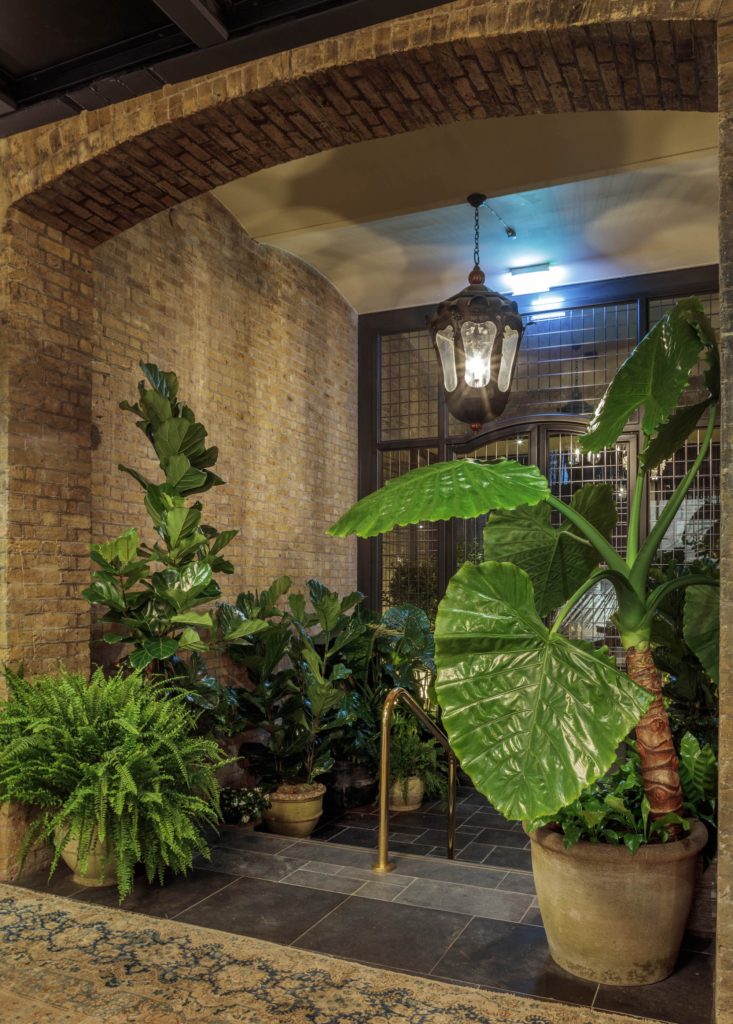 One of the major challenges of the site was the low light levels in many planting areas and the impact of a central heating system. The dark entrance has a woodland area with Magnolia grandiflora and camellias that are happy in these cool corridors.