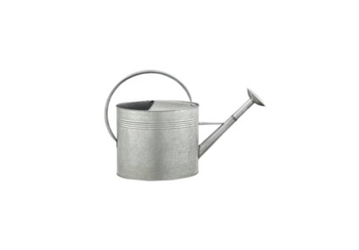 GroundWork&#8\2\17;s Metal Watering Can can hold up to two gallons of water; \$\14.99 at Tractor Supply Co.