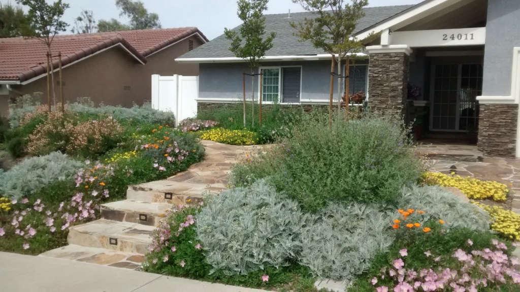 Front garden in 2017