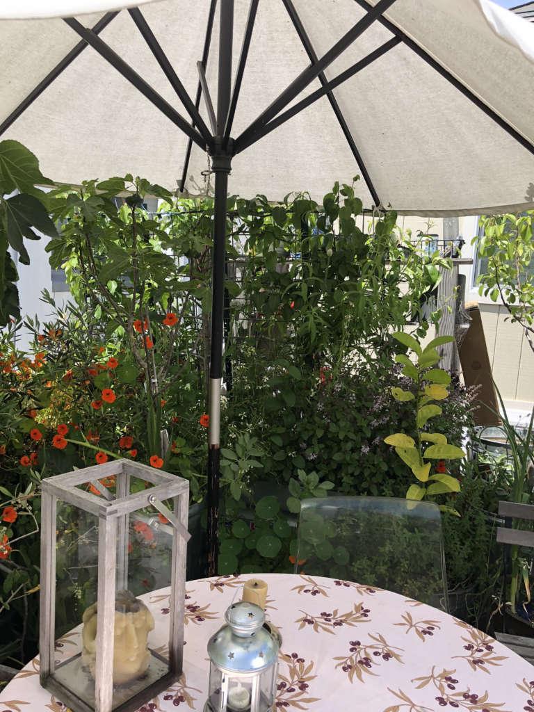 Patio dining at its gourmet garden best!
