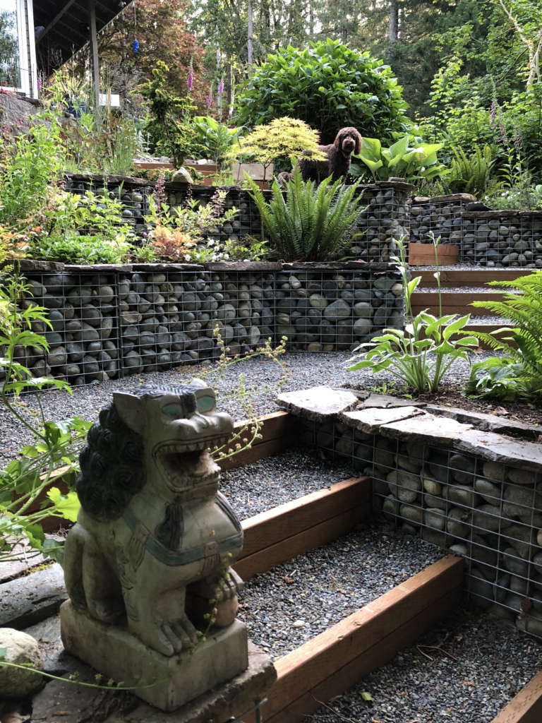Gabion Garden
