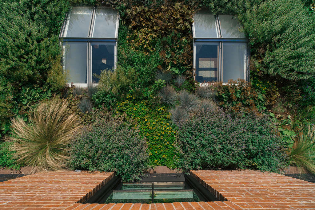 Green roof textures