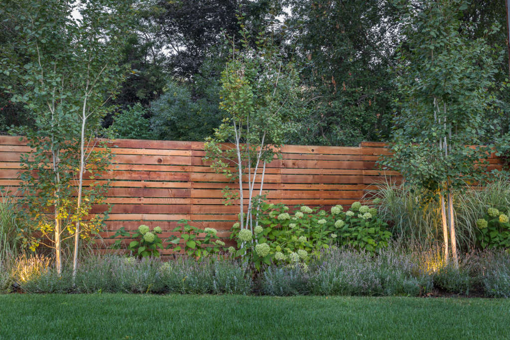Boldly textured plantings