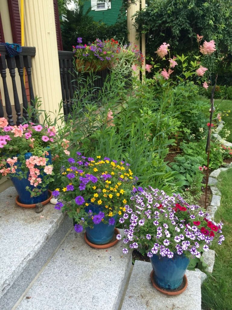 Color on the Front Steps