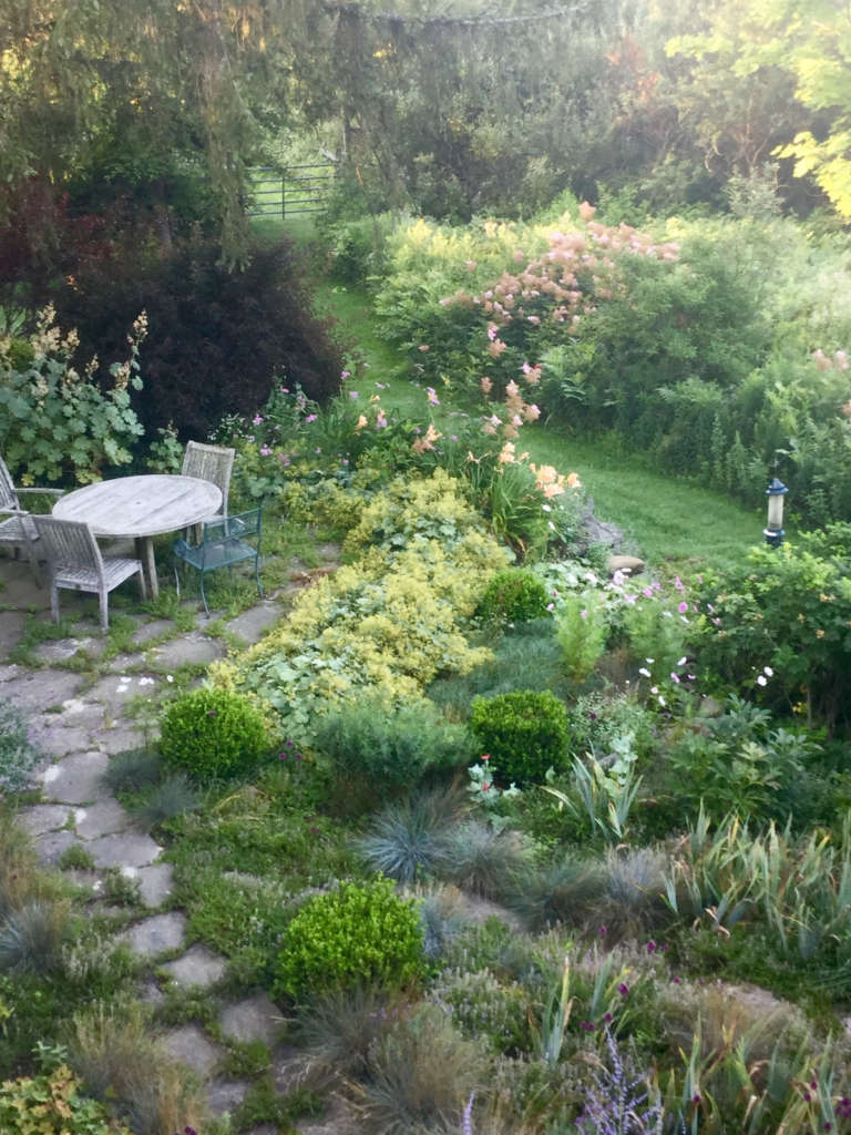 Overlooking the Herb garden from our bedroom by Betsy
