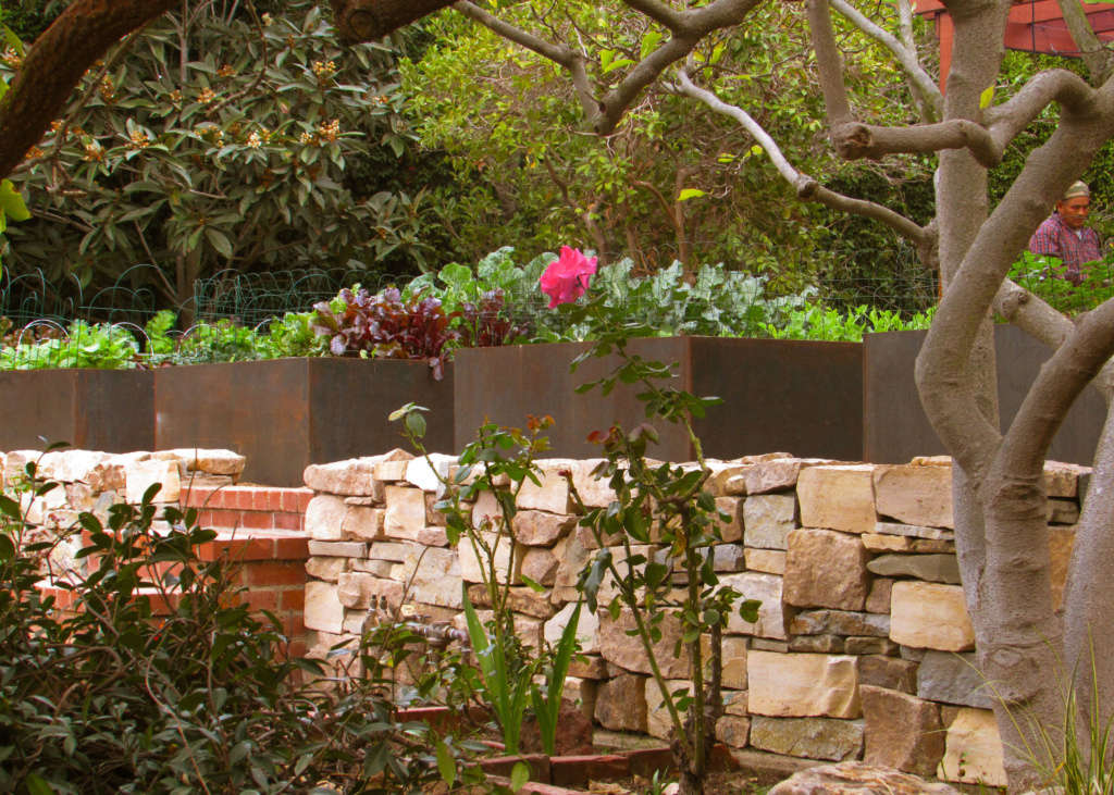 CorTen Vegetable Beds Supply Almost 100% of Their Year-Round Produce