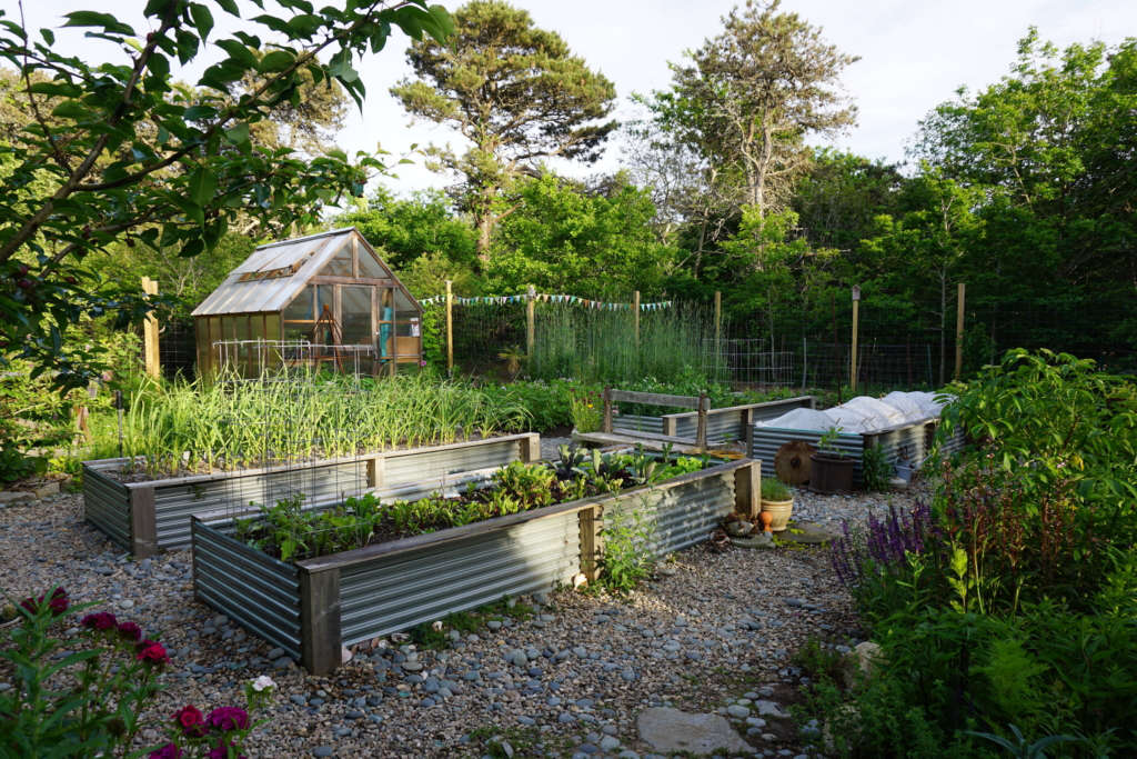 Garden greeting