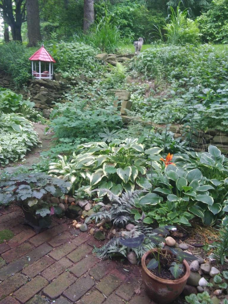 I love shade gardens