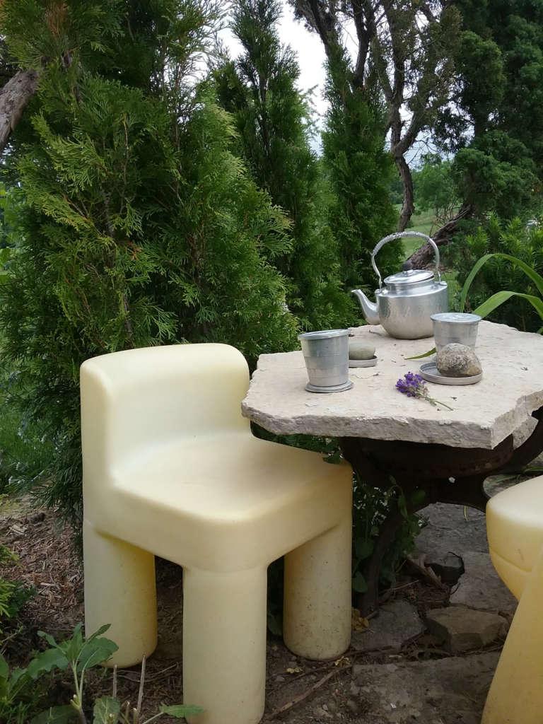 Tea Thyme