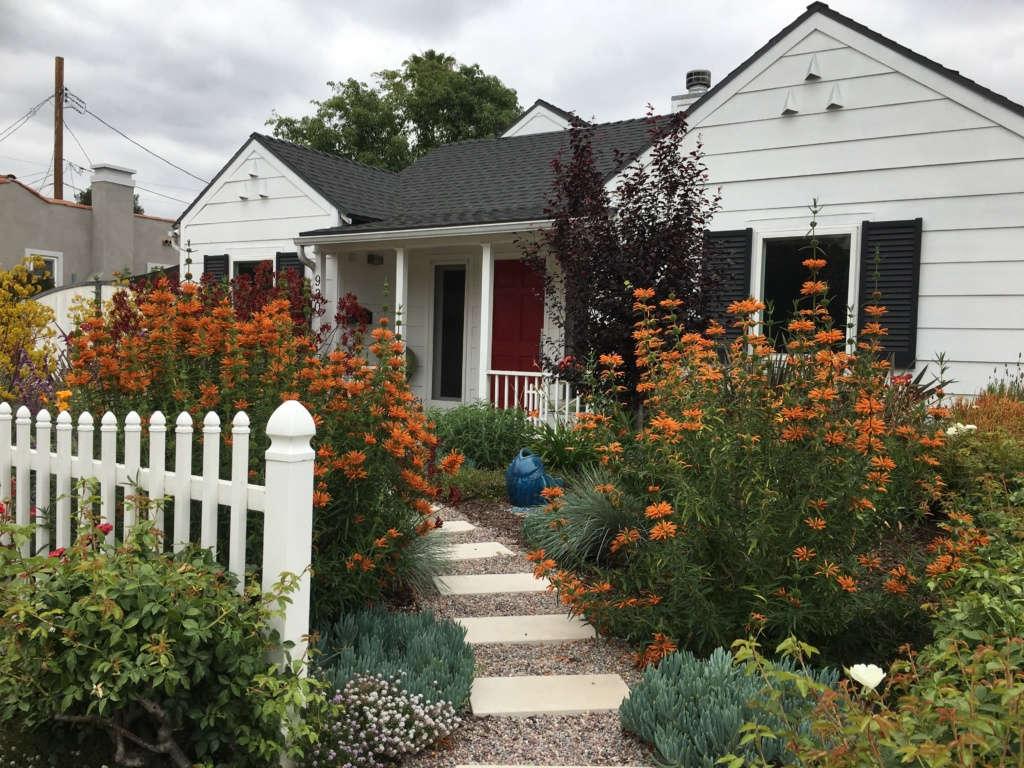 California Contemporary Cottage Garden Pathway