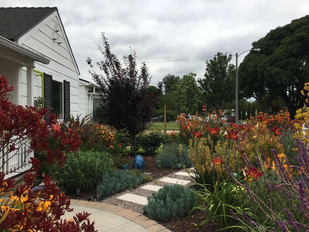 Contemporary California Cottage Garden - House View