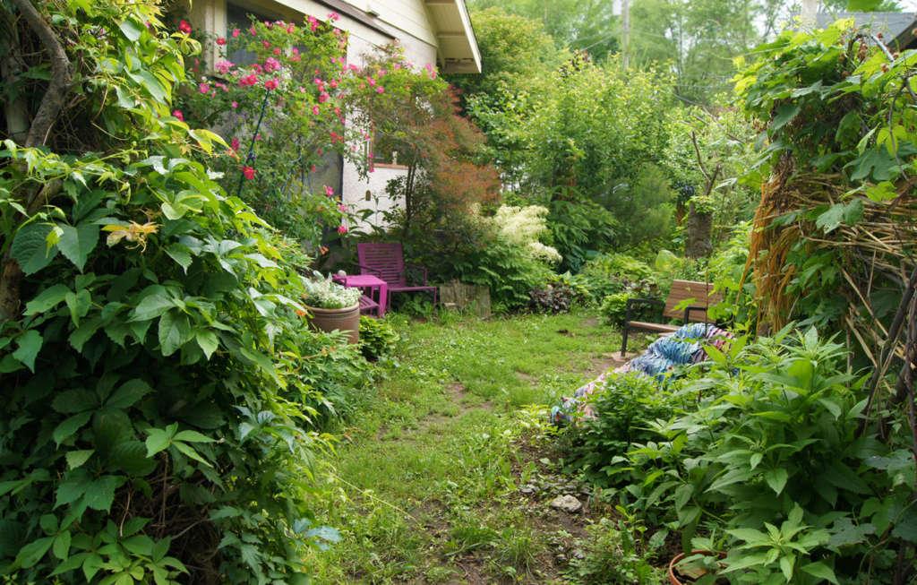 Backyard Entry