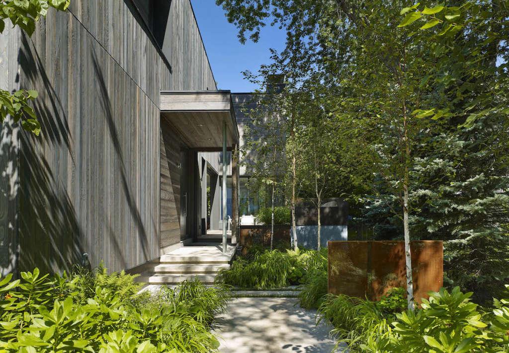 Landscape elements provide visual rhythm along the pathway