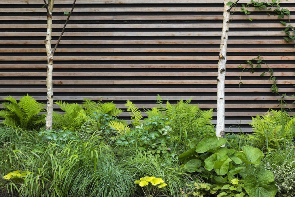 Biodiverse planting beds