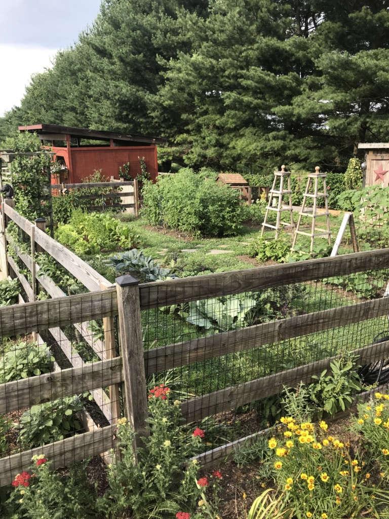 Evergreen Farm Garden