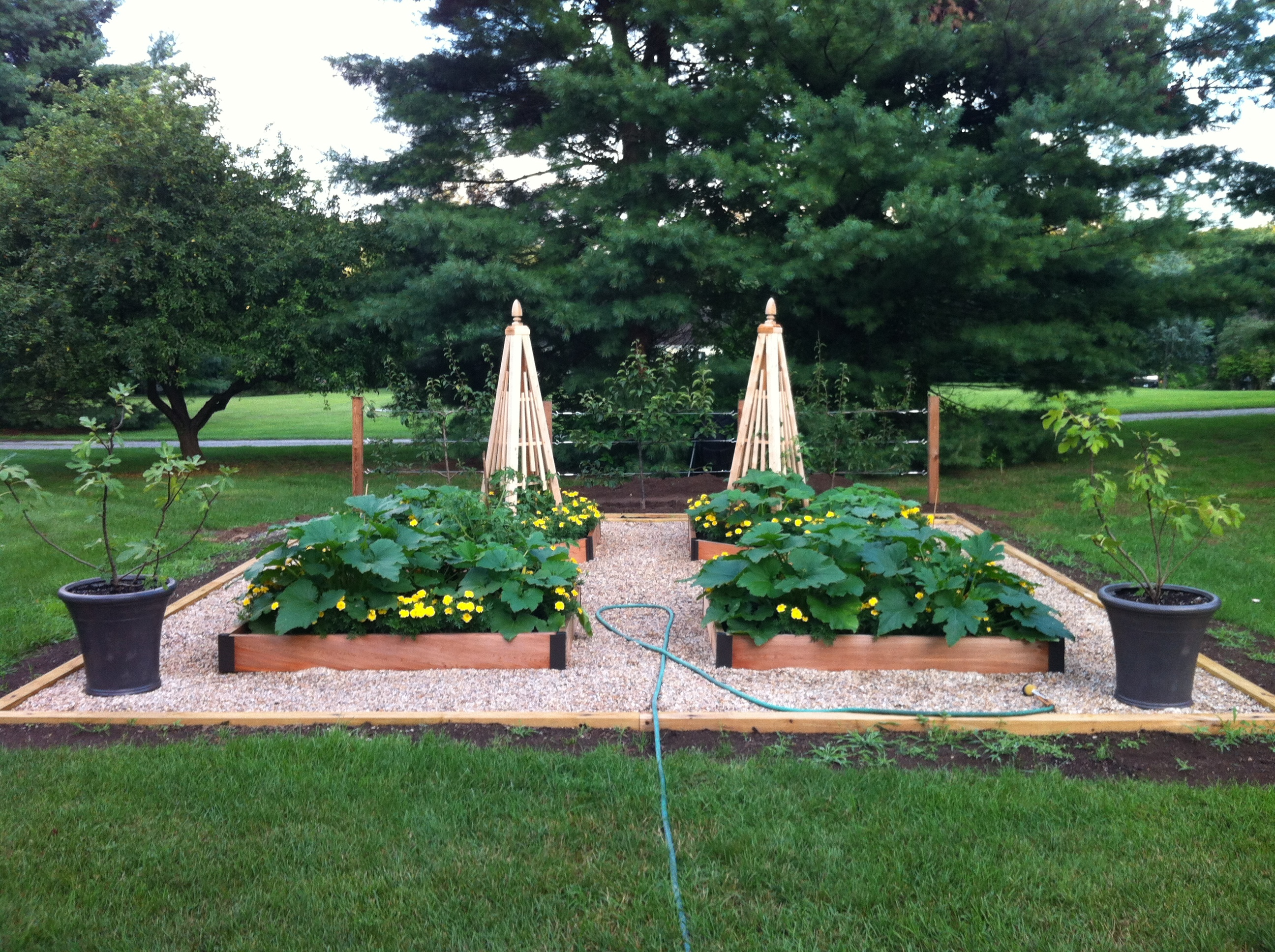 Raised Bed Vegetable Garden - Early Years