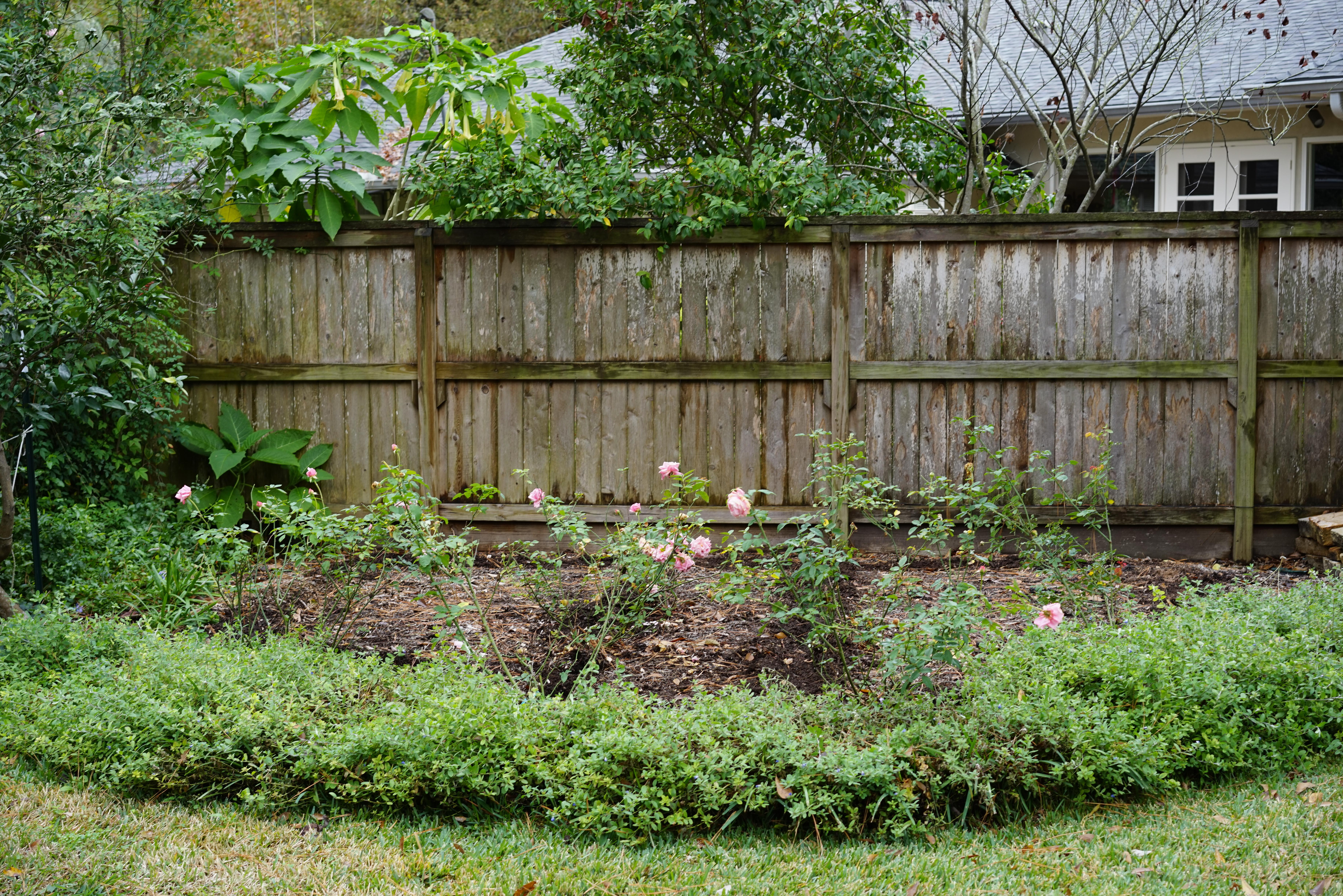 Before the Cottage Cor Ten Garden