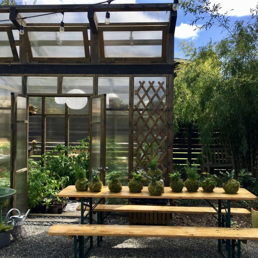 Greenhouse & biergarten table