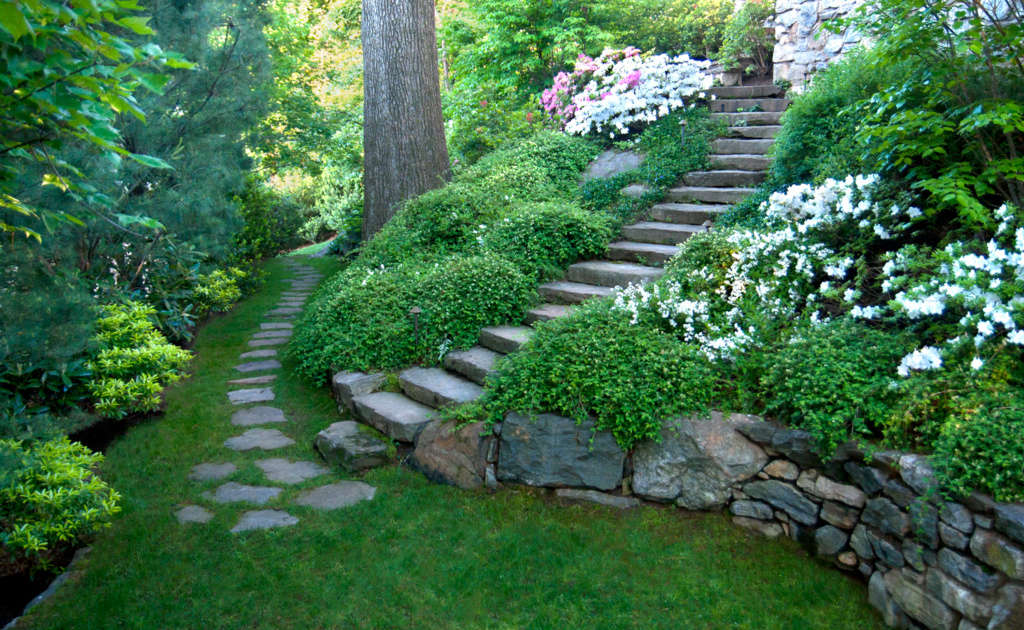 Hillside Stone Steps