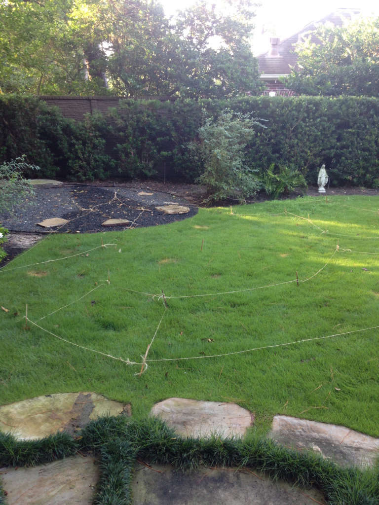Before the Garden