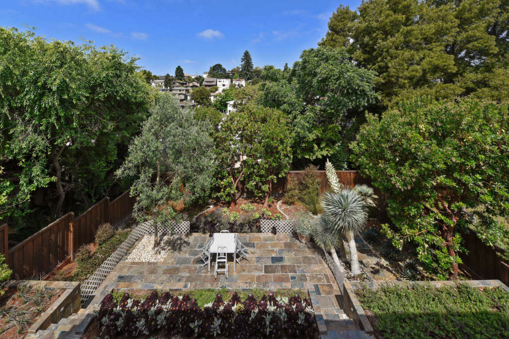 Garden from Stair