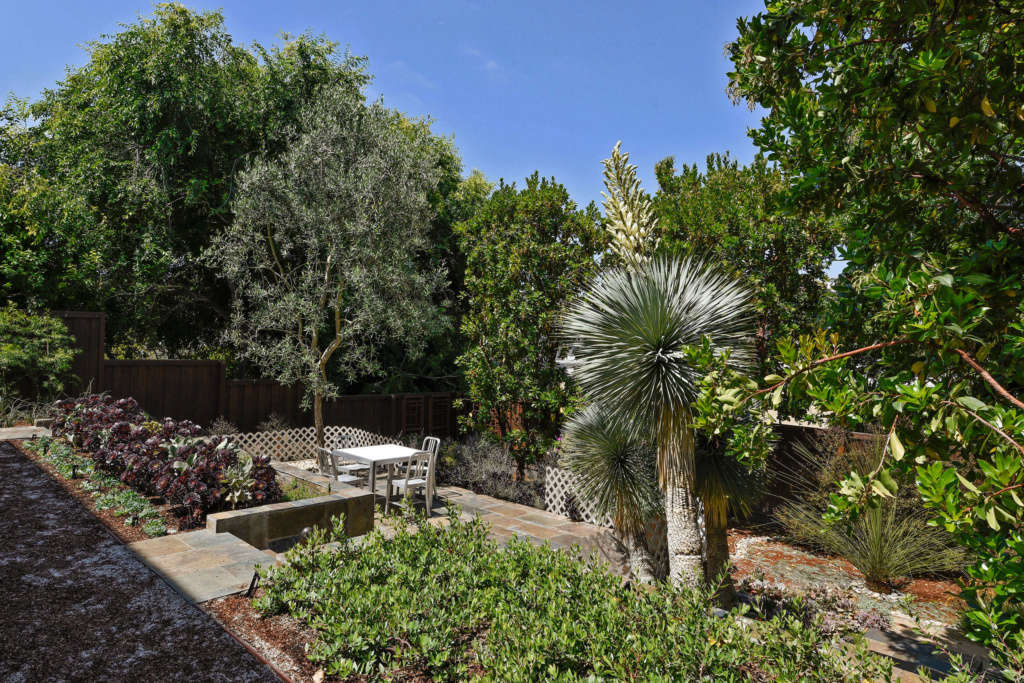 SW Corner of Garden