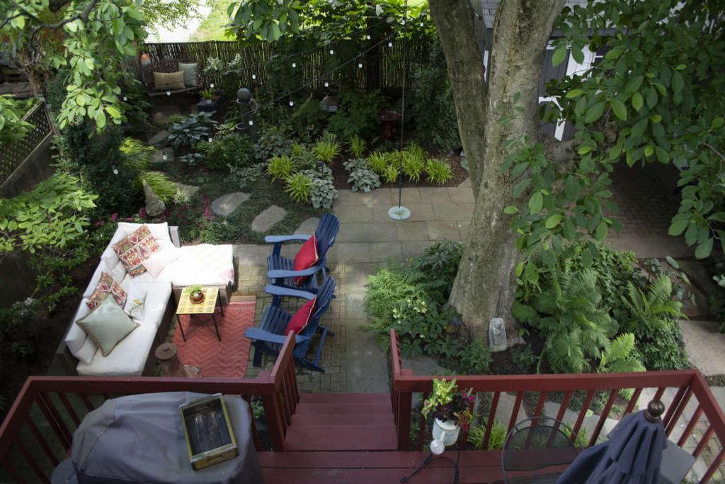 Bird's Eye View of the Backyard