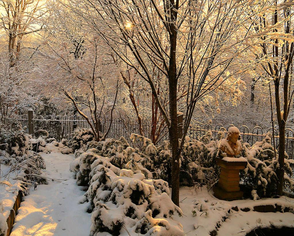 Beethoven presides over a February snowfall