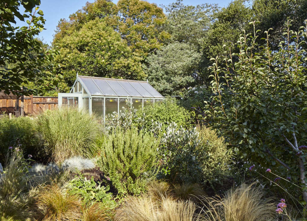 Green House Nestled in The Orchard