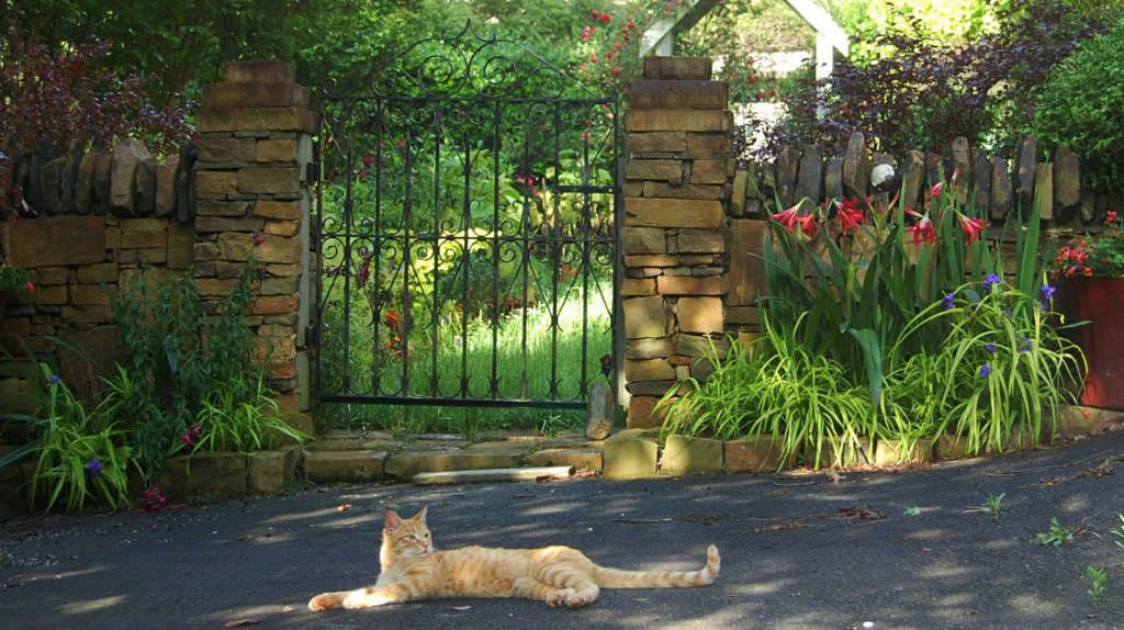 Guarding the Gate